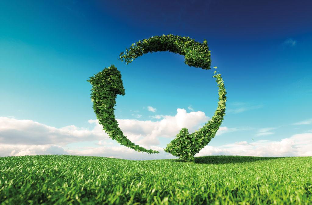 Bueroring Umwelt und Verantwortung